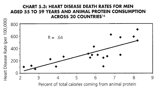Animal protein Heart disease China Study: A Voice for Veganism